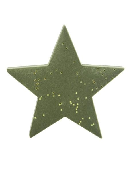 Διακοσμητικό βελούδινο αστέρι