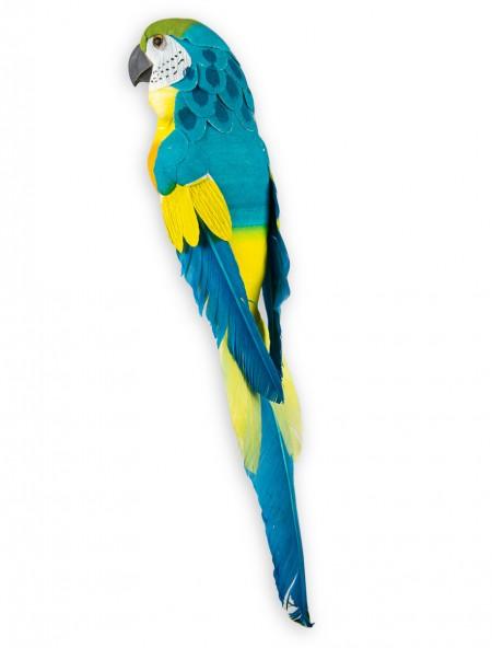Διακοσμητικός παπαγάλος σε κλιπ